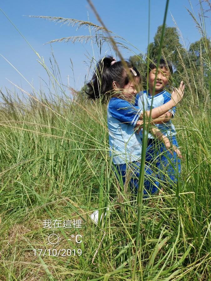 主題︰大自然教學活動花絮_13